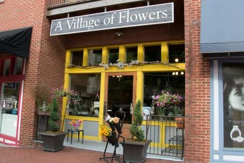 Hillsboro Village - Nashville - June 2015-16