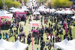 Nashville Cherry Blossom Festival 2016-34