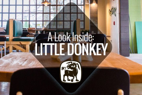 little-donkey