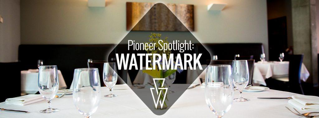 Pioneer Spotlight-Watermark