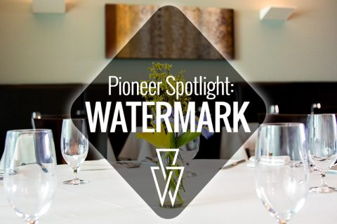 Pioneer Spotlight-Watermark