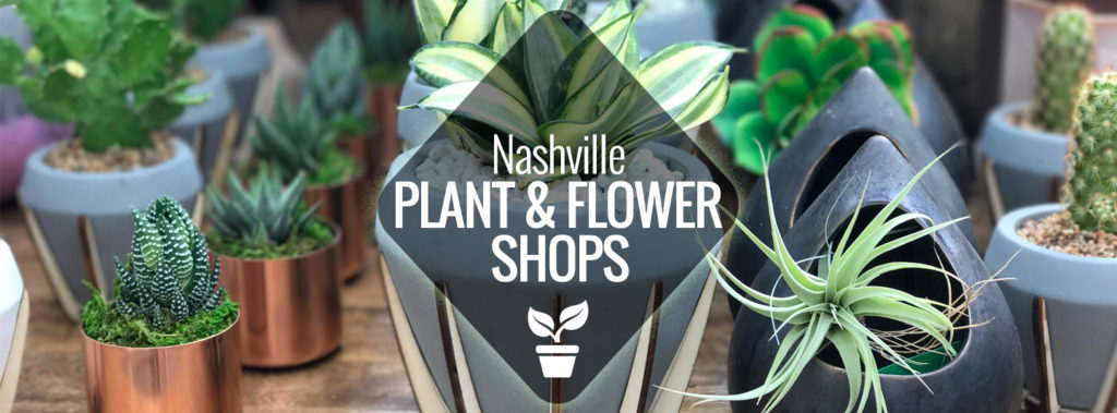 Plant & Flower Shops in Nashville | Nashville Guru on house plants with colorful leaves, indoor plant identification by flower, house plants and their names, house plant propagation, shrubs that flower, house plant white flower, house plant with curly leaves, house identify plant by leaf, house plant pink flower, house with flowers, house plant with heart shaped leaves, indoor plant with white flower, house plants with red veins, palms that flower, house plant identification succulent plant, house plant with green leaves and white, indoor flowering plants flower, grass that flower, house plants with large leaves, house plants for fall,