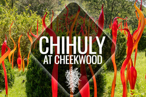 Chihuly at Cheekwood 480x320 - Cheekwood Gardens Holiday Lights & Dinner November 29