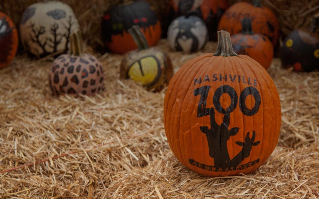 Boo at the Zoo | Nashville Guru